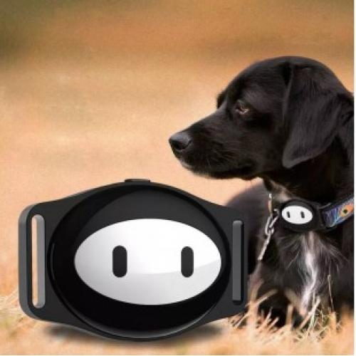 GPS ошейник для собак