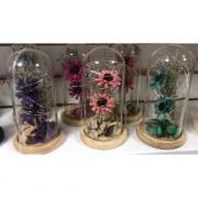 Вечный букет цветов в колбе с подсветкой