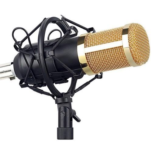Студийный микрофон ВМ-800